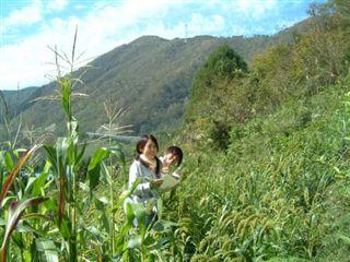 池川の焼畑、蕎麦を収穫_e0002820_22583966.jpg