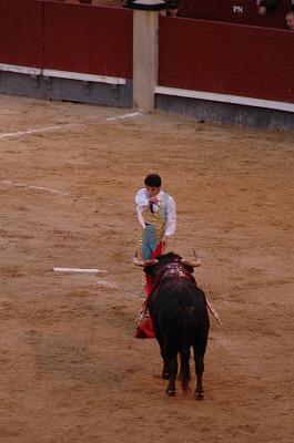 闘牛 (Madrid)_e0076932_7184397.jpg