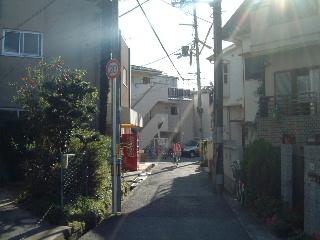紅葉にはまだチト早いから in 箕面_e0017332_21454047.jpg
