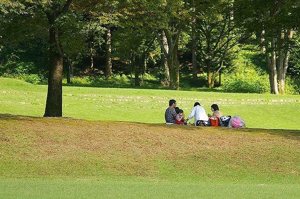 カツラの紅葉~鶴来樹木公園_d0043136_87496.jpg