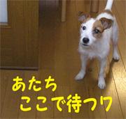 b0065067_036269.jpg