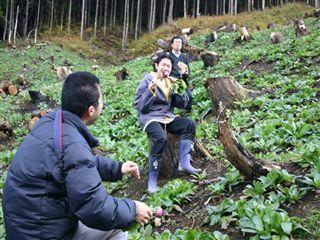 山形県の焼畑_e0002820_1659771.jpg