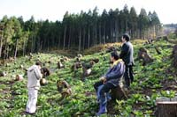 山形県の焼畑_e0002820_1722567.jpg
