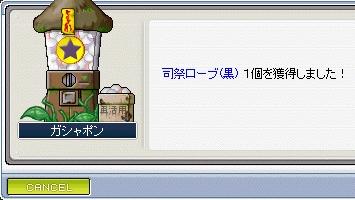 e0071128_2315150.jpg