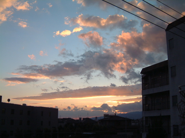 シネ・ヌーヴォと夕陽、あるいはフリッカーという映像の魔_e0017332_222414.jpg