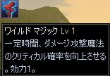 e0045394_11263866.jpg