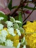 b0068197_0125261.jpg