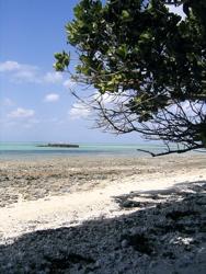 旅ノキロク〜離島へ【2日目】_d0028589_16472951.jpg