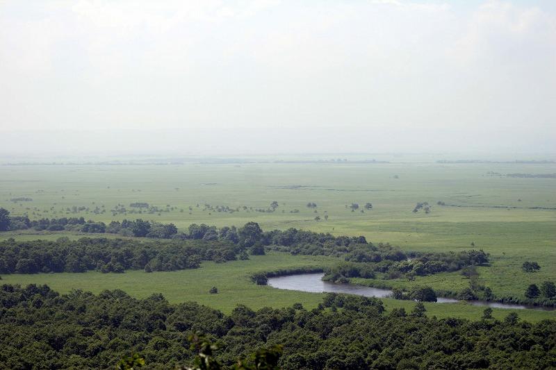 今回は釧路湿原ちこっと紹介だすよ~_a0039860_1930475.jpg