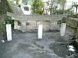 d0030267_133862.jpg