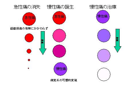 b0052170_5555010.jpg