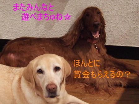 c0061923_20542463.jpg