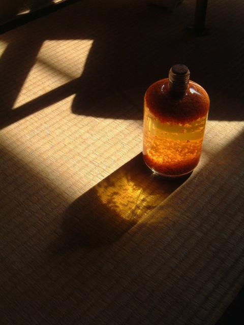 金木犀酒_e0017332_126485.jpg