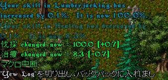 c0022646_3465566.jpg
