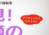 スポーツバイク入門書_a0044241_2320315.jpg
