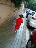 c0048899_20151538.jpg