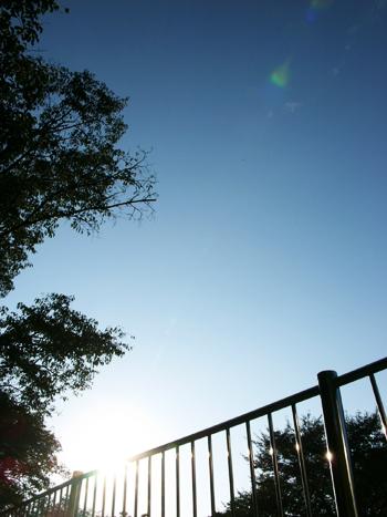 324 空を撮る理由 #8_c0001773_12363.jpg