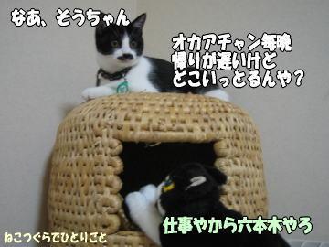 b0041182_0175146.jpg