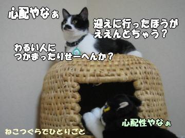 b0041182_0284434.jpg