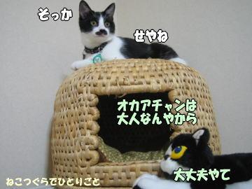 b0041182_0285993.jpg