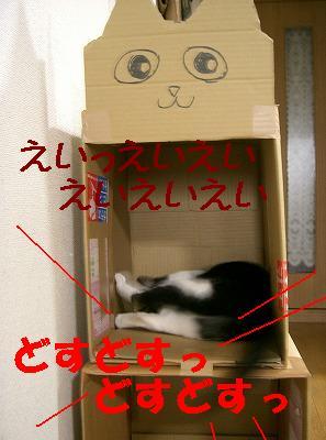 d0005397_18394338.jpg