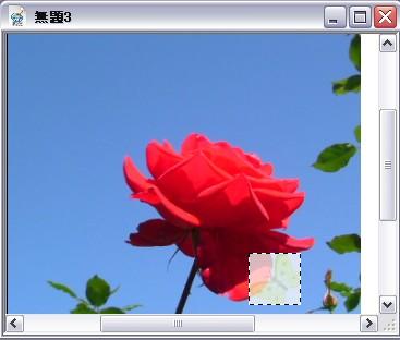 d0048312_19335914.jpg