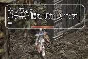 b0032347_004811.jpg
