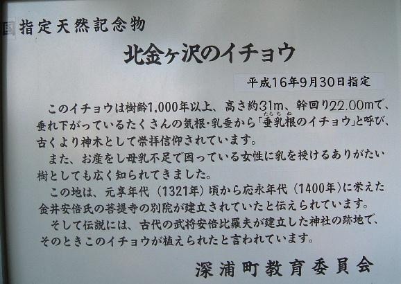 b0067569_046070.jpg