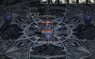b0056117_75917100.jpg