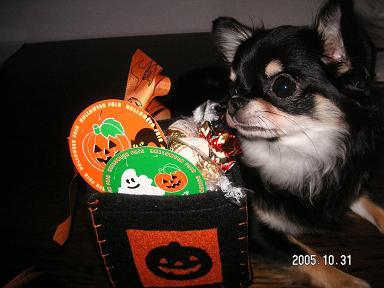 Happy Halloween_d0006467_18274627.jpg