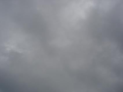 ー今日も曇り・・・−_e0051174_1231352.jpg