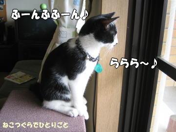 b0041182_105995.jpg