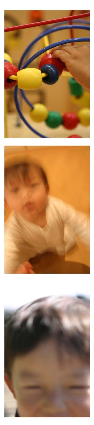カワセミの子育ての話_e0025661_8405524.jpg