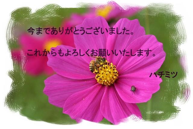 e0022803_2125765.jpg