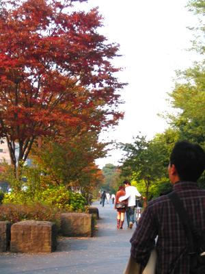 イサムの秋、ノグチの秋。_d0028499_23145468.jpg