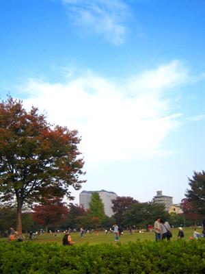 イサムの秋、ノグチの秋。_d0028499_23281591.jpg