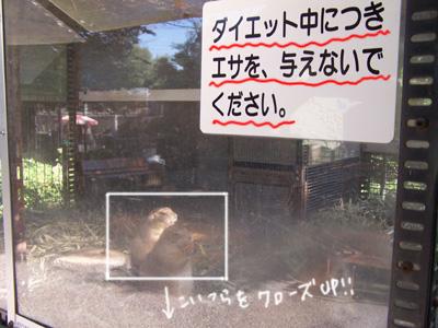 b0059622_17181221.jpg