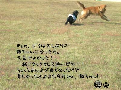 b0048649_0135530.jpg