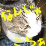 b0020765_23131017.jpg