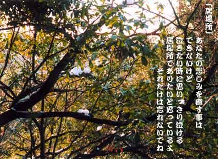 b0044724_16283084.jpg