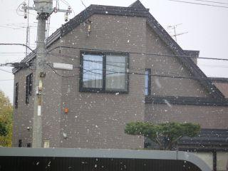 初雪だより_c0025115_11545983.jpg