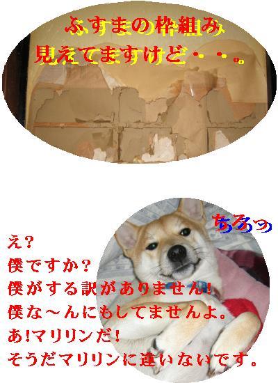 e0085147_19194951.jpg