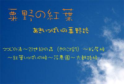 b0012811_0342118.jpg