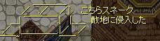 b0051419_603879.jpg