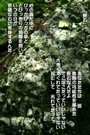 b0044724_037574.jpg