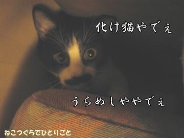 b0041182_956965.jpg