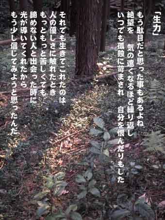 b0044724_21221173.jpg