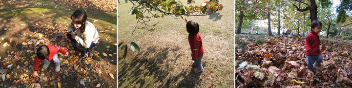 秋の歌詠み_c0004024_10404967.jpg
