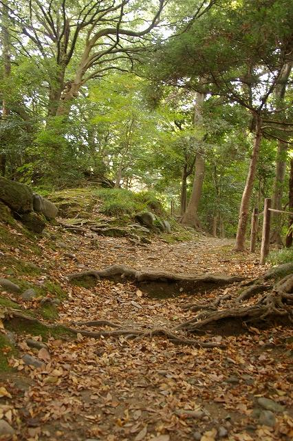 尾山神社の神門_d0043136_21373347.jpg