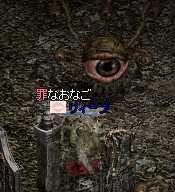 b0032347_11105019.jpg